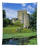 Pond In Front Of A Castle, Blarney Tapestry