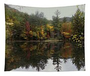 Pond In Jackson Tapestry