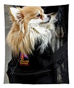 Pooch In The Pouch Tapestry