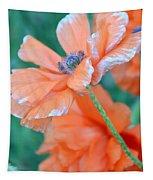 Poppy Passion Tapestry