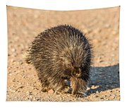 Porcupine Walking Tapestry
