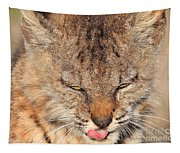 Portrait Of A Young Bob Cat 02 Tapestry
