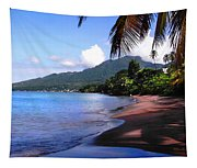 Portsmouth Shore On Dominica Filtered Tapestry