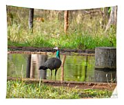Posing Peahen Tapestry