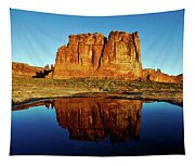 Pothole Reflections - Arches National Park Tapestry