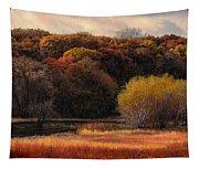 Prairie Autumn Stream Tapestry