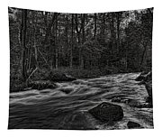 Prairie River Whitewater Black And White Tapestry