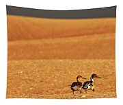 Prairie Storm And Ducks Canada Tapestry