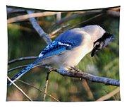 Praying Blue Jay Tapestry