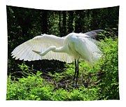 Preening The Wings Tapestry