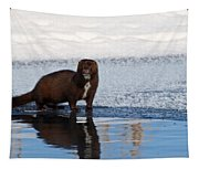 Pretty Reflecting Mink Tapestry
