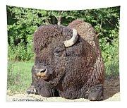 Prim And Proper Bison Tapestry