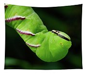 Privet Hawk Moth Caterpillar Tapestry