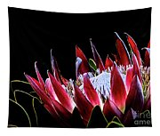 Protea 1 Tapestry