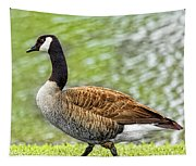 Proud Goose Tapestry