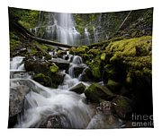 Proxy Falls Oregon 5 Tapestry