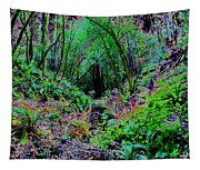 Psychedelic Fern Gully On Mt Tamalpais Tapestry