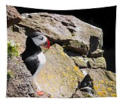 Puffin And Rocks Tapestry