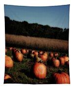 Pumpkin Field Shadows Tapestry