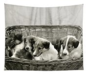 Puppies Of The Past Tapestry