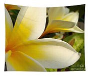 Pure Beauty Plumeria Flowers Tapestry