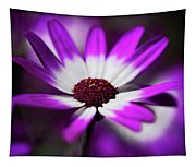 Purple And White Daisy  Tapestry