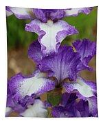 Purple And White Iris Layers Tapestry