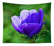 Purple Anemone Tapestry