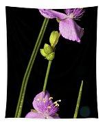 Purple  Tapestry