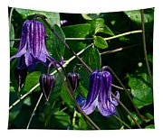 Purple Clamatis Bells Tapestry