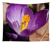 Purple Crocus Tapestry