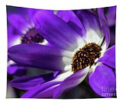 Purple Daisy Tapestry