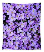 Purple Flowers - Rockcress Tapestry