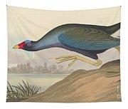 Purple Gallinule Tapestry