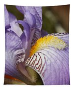 Purple Iris Closeup Tapestry