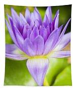 Purple Lotus Blossom Tapestry