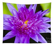 Purple Lotus Tapestry