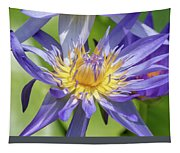 Tropical Purple Water Lily Tapestry