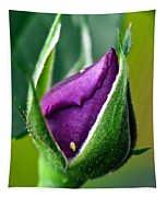 Purple Rose Bud Tapestry