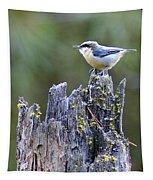 Pygmy Nuthatch Tapestry