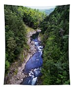 Quechee Gorge In Vermont Tapestry