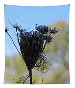 Queen Annes Lace In Autumn Tapestry
