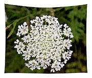 Queen Anne's Lace Tapestry