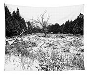 Quiet Winter Black And White Tapestry