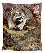 Raccoon Found Treasure  Tapestry