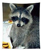 Raccoon1 Snack Bandit Tapestry