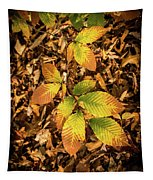 Radiant Beech Leaf Branches Tapestry