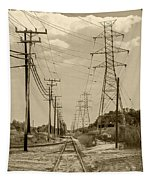Rails And Wires Tapestry