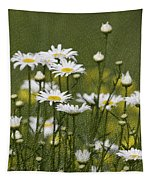Rain Drops On Daisies Tapestry