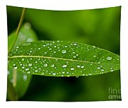 Rain Drops On Leaves #1 Tapestry